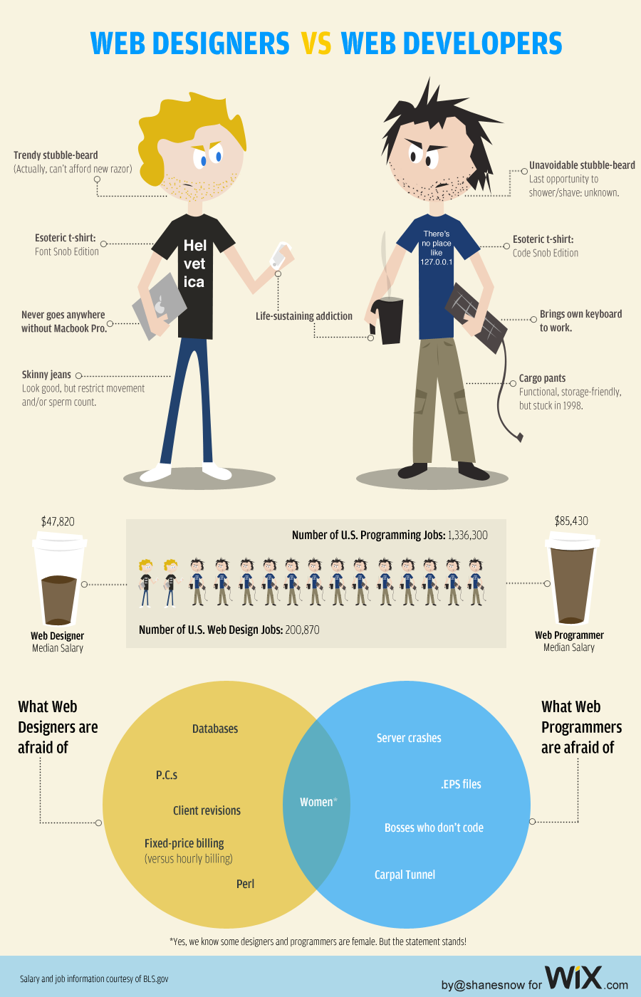 webdesigner vs developer