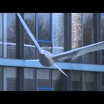 Un oiseau-robot plus vrai que nature !