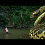 photos Piranhaconda Trailer