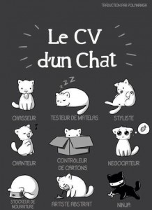photos Le CV d'un chat
