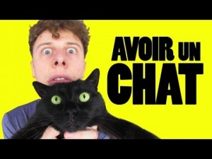 photos Norman, Avoir un chat